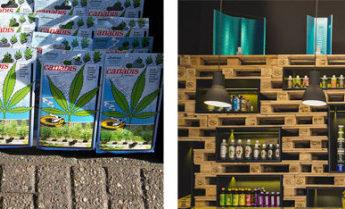 Aprire un GrowShop – Guida Completa