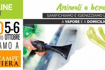 Gli eventi di Ottobre di Ecoline Wash