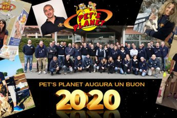 Un anno di successi, il 2019 di Pet's Planet